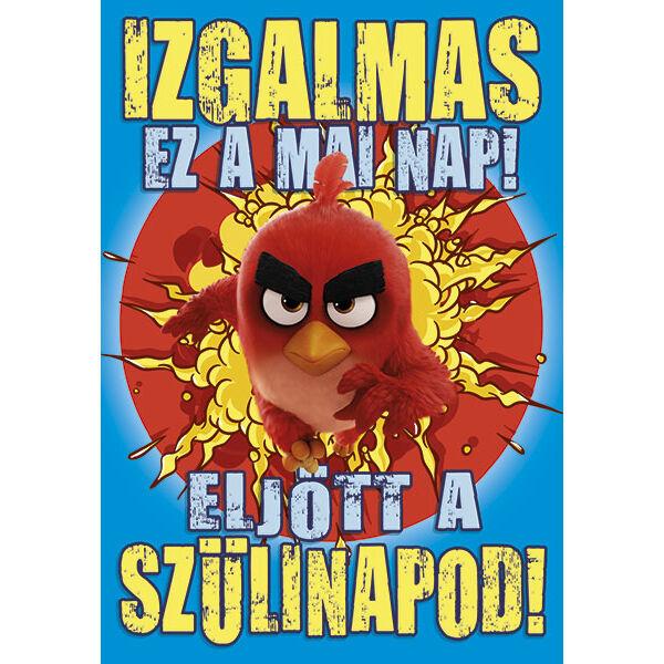 Angry Birds képeslap