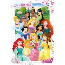 Disney Hercegnők prémium poszter