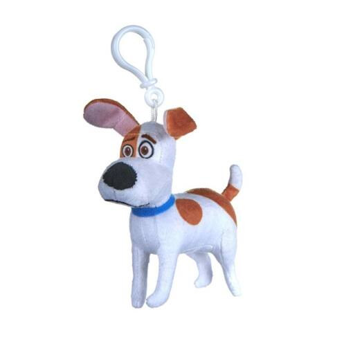 Max, a Jack Russel terrrier